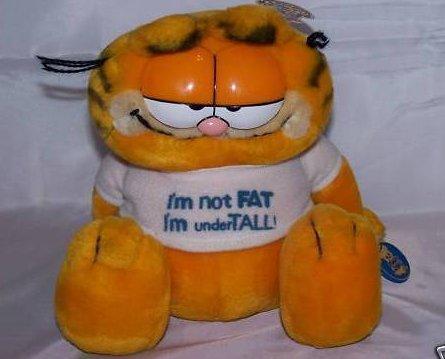 Garfield Stuffed Plush w Tags, I am not fat, I am under tall, 1981