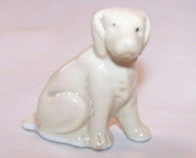 Labrador Dog Puppy, Light Brown, Japan Japanese
