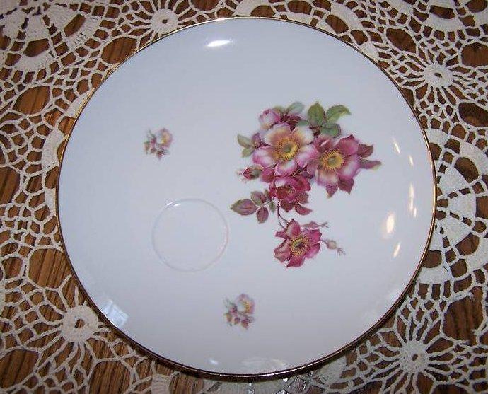 Schumann Arzberg, Bavaria, Germany Wild Rose Plate