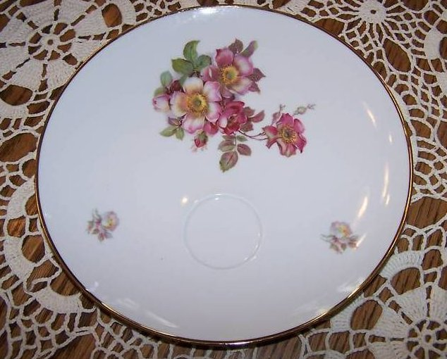 Schumann Arzberg, Bavaria Wild Rose Plate with Faint Line