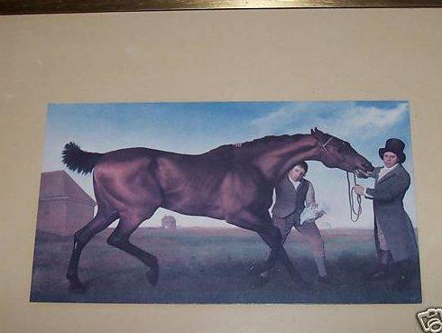 George Stubbs Horse Painting Print, Framed
