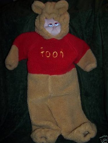 Image 0 of Winnie the Pooh Costume, Sz 2T, 4T Disney Store