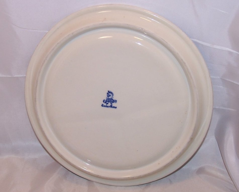 Image 1 of Warwick Tudor Rose Divided Grill Plate Blue Blurred Design