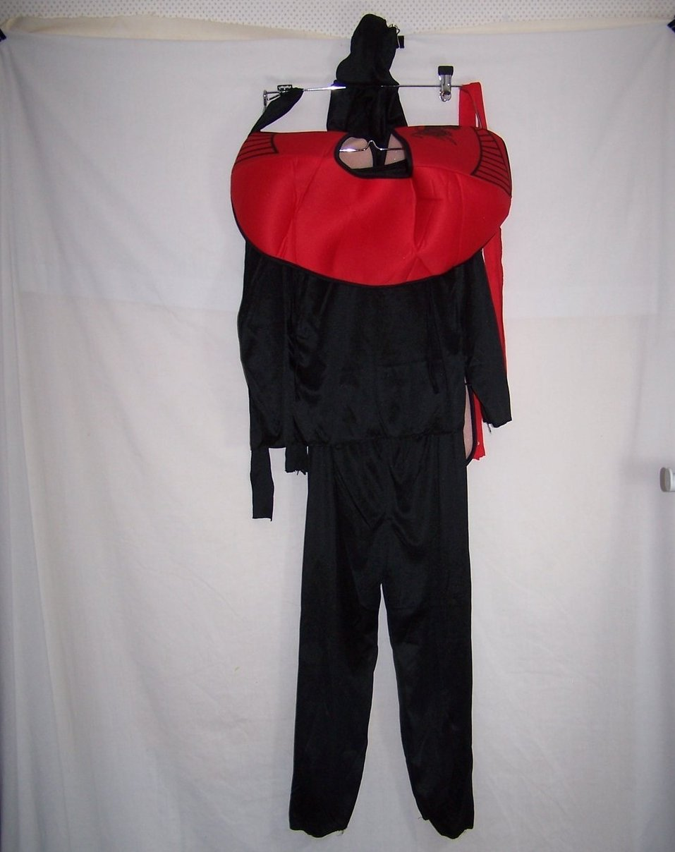 Image 1 of Ninja Costume in Orig Package, Sz 7 to 10