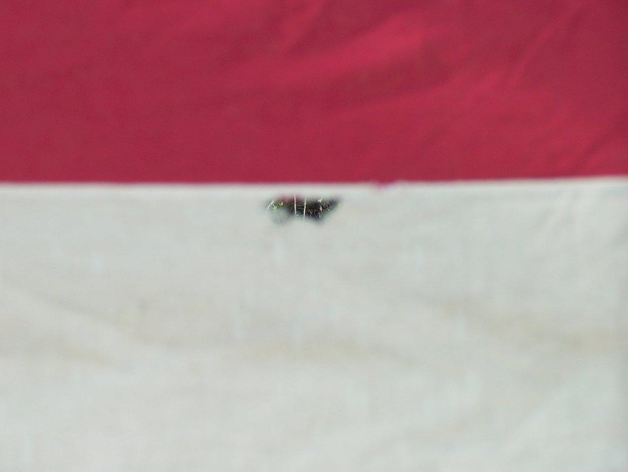 Image 3 of WWII Era 48 Star American Flag Sewn Cloth, Garrison Size