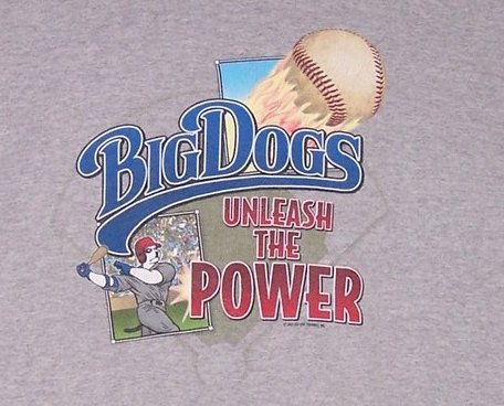Big Dogs Unleash the Power, Baseball T Shirt, Boys SZ 16,18