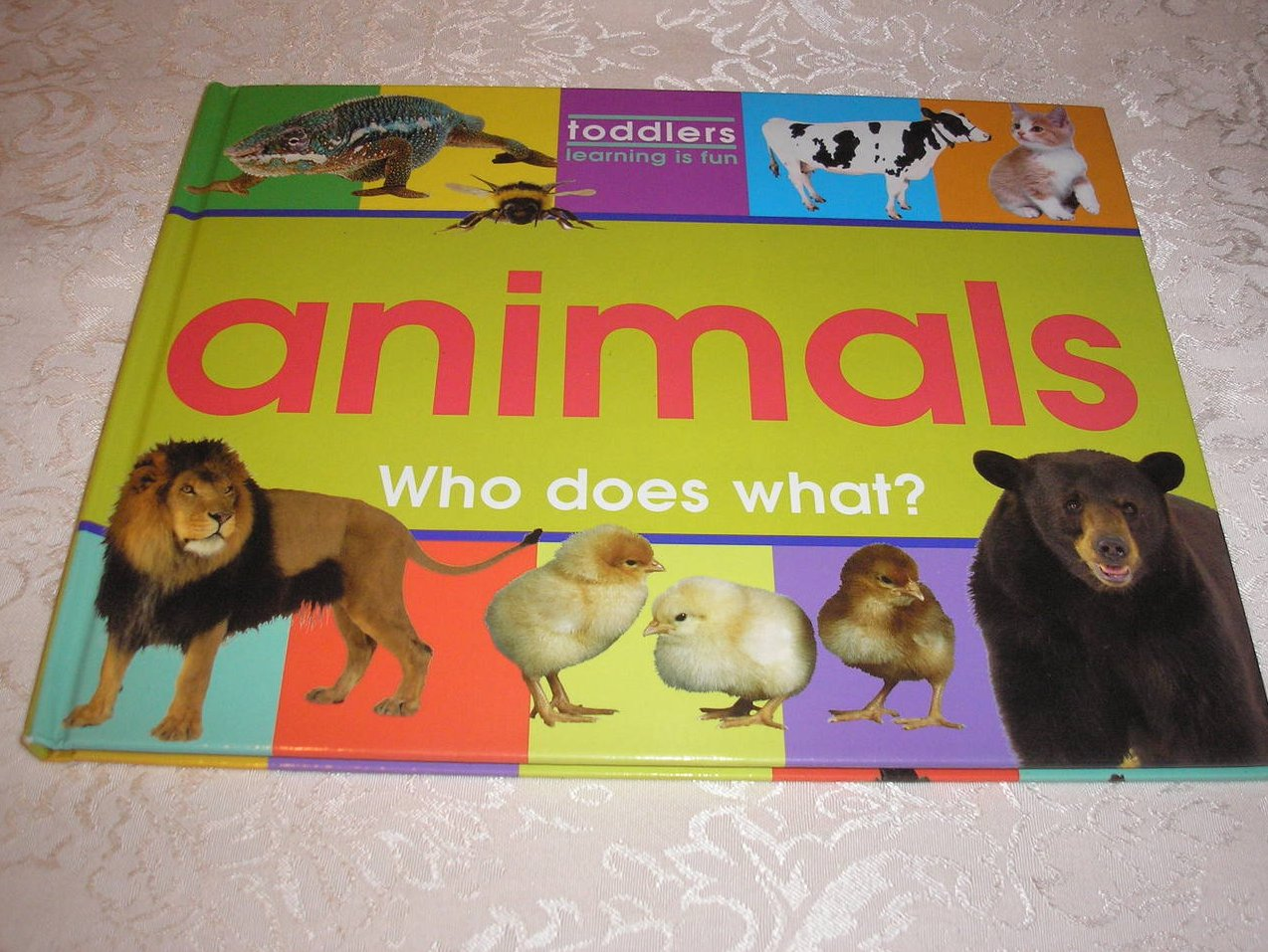 Animals Who Does What? Brockhampton Press good used hc
