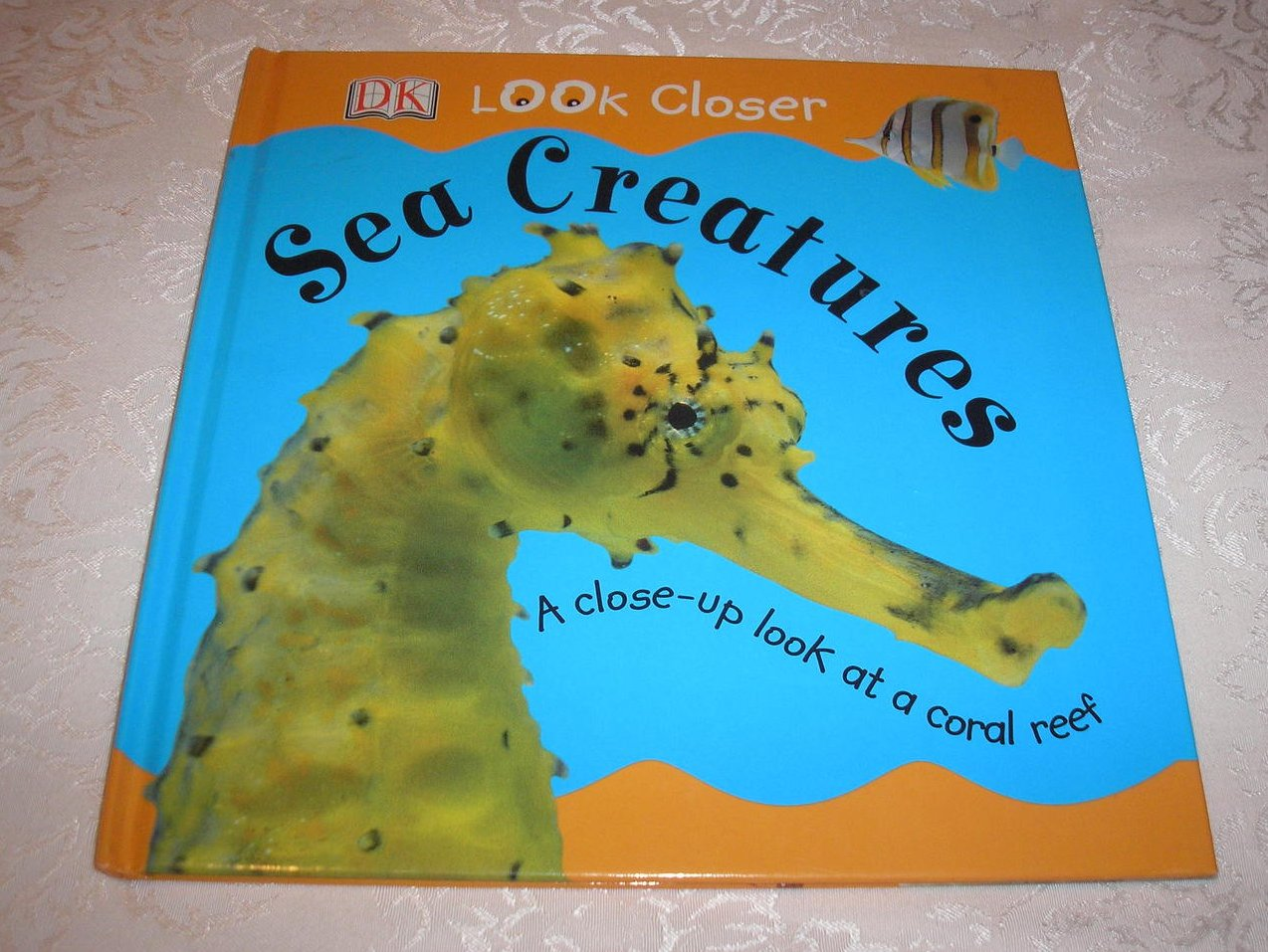 DK Look Closer Sea Creatures good used science hc