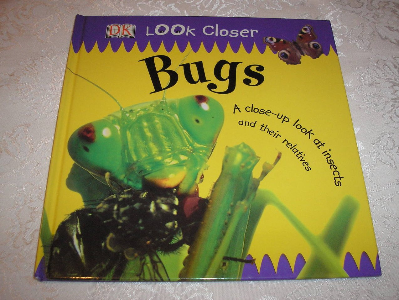 DK Look Closer Bugs good used science hc