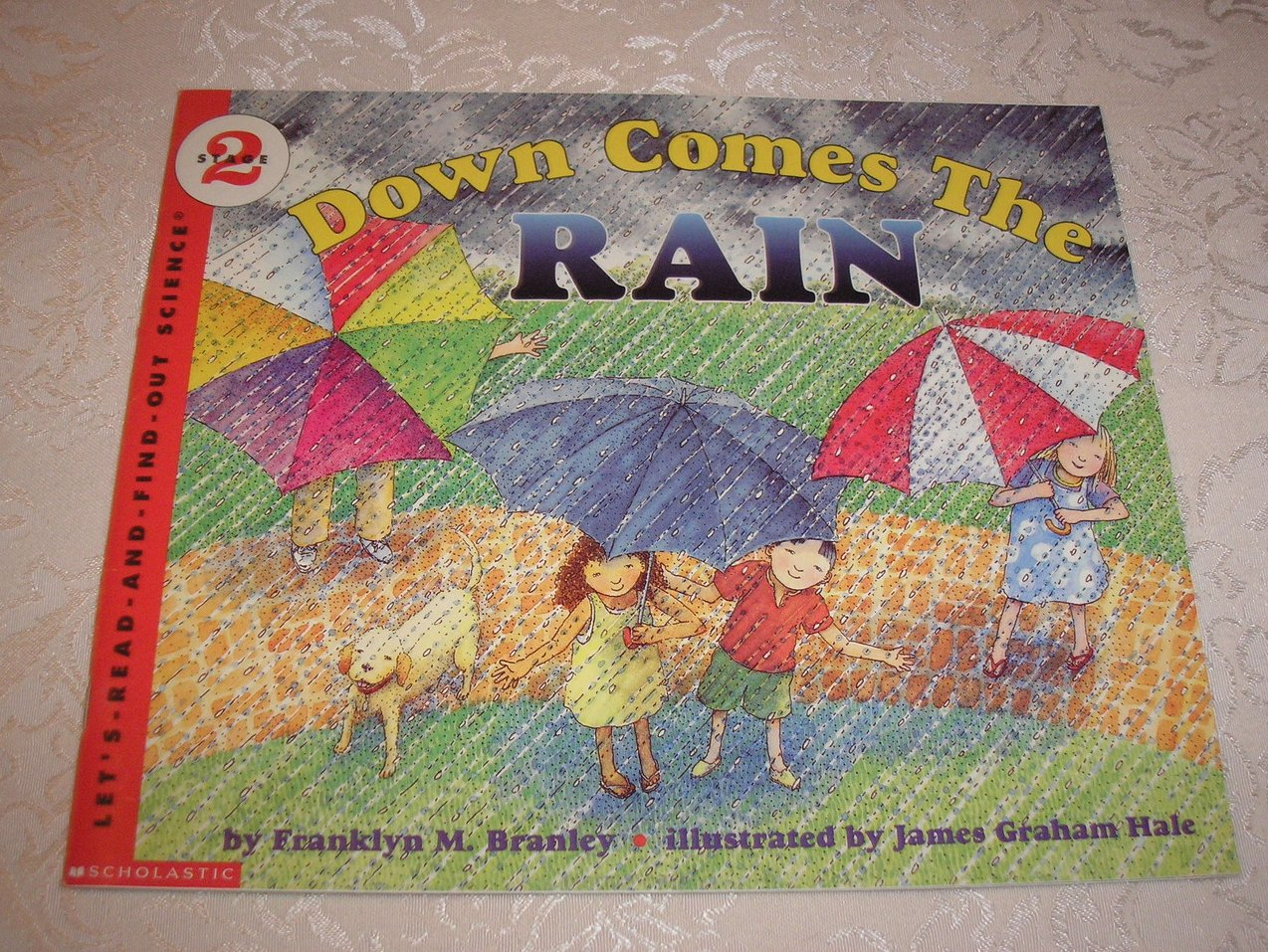 Down Comes The Rain Franklyn M. Branley Stage 2 Science like new sc