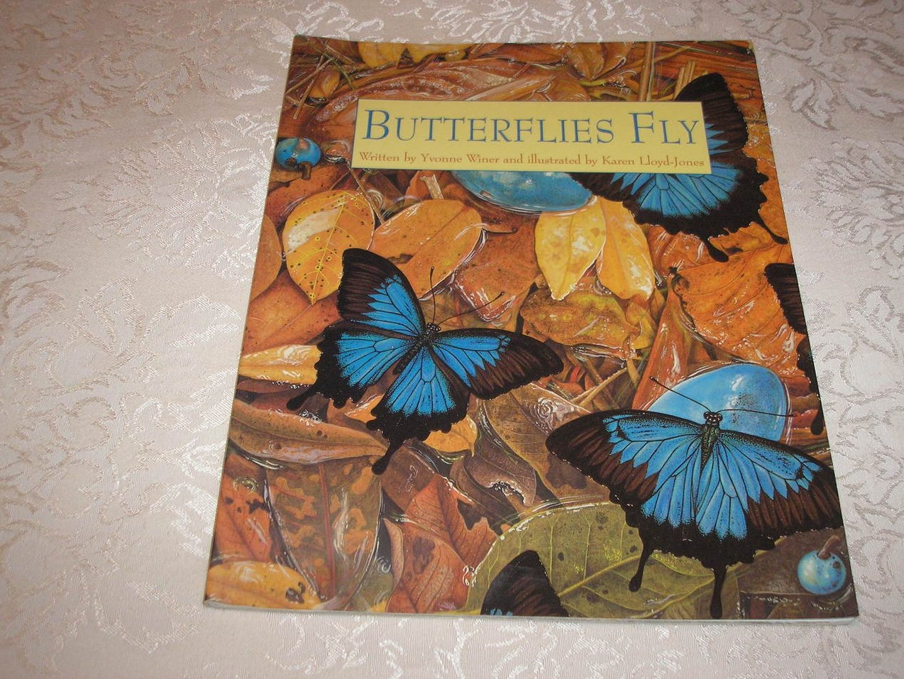 Butterflies Fly Yvonne Winer good sc