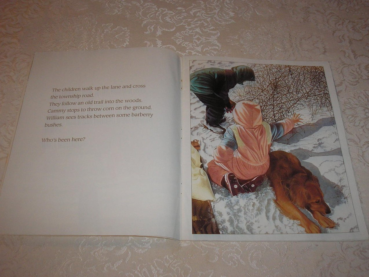 Image 1 of In the Snow: Who's Been Here? Lindsay Barrett George Good Rare Softcover