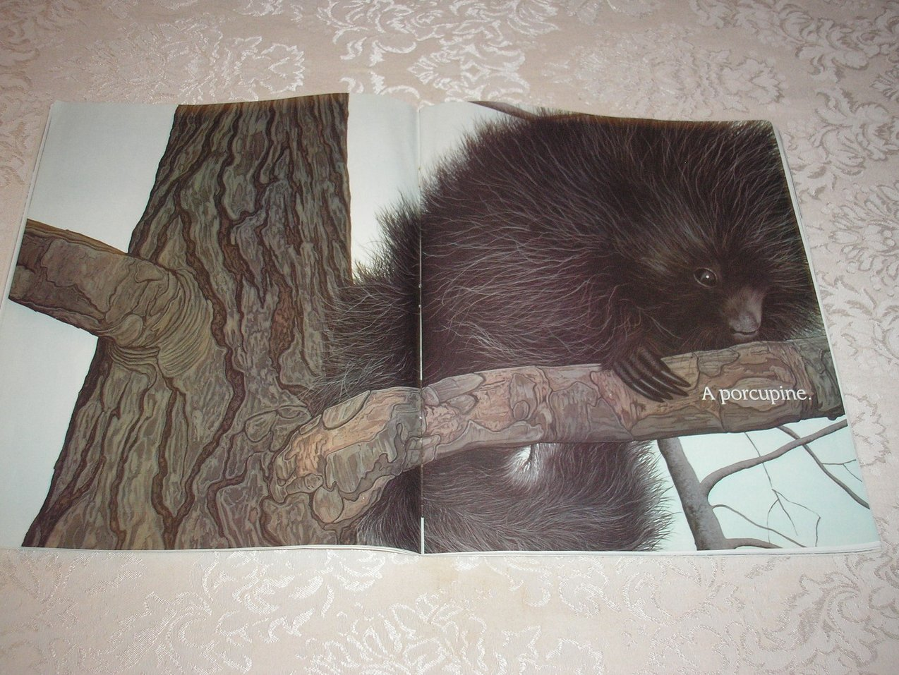 Image 3 of In the Snow: Who's Been Here? Lindsay Barrett George Good Rare Softcover