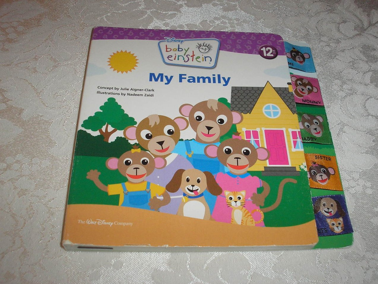 Disney Baby Einstein My Family good used board book