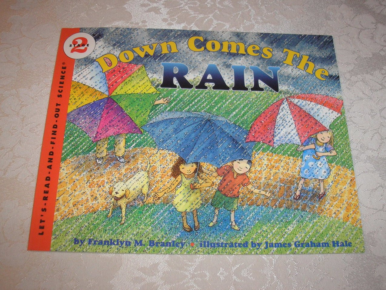 Down Comes The Rain Franklyn M. Branley Stage 2 Science very good sc