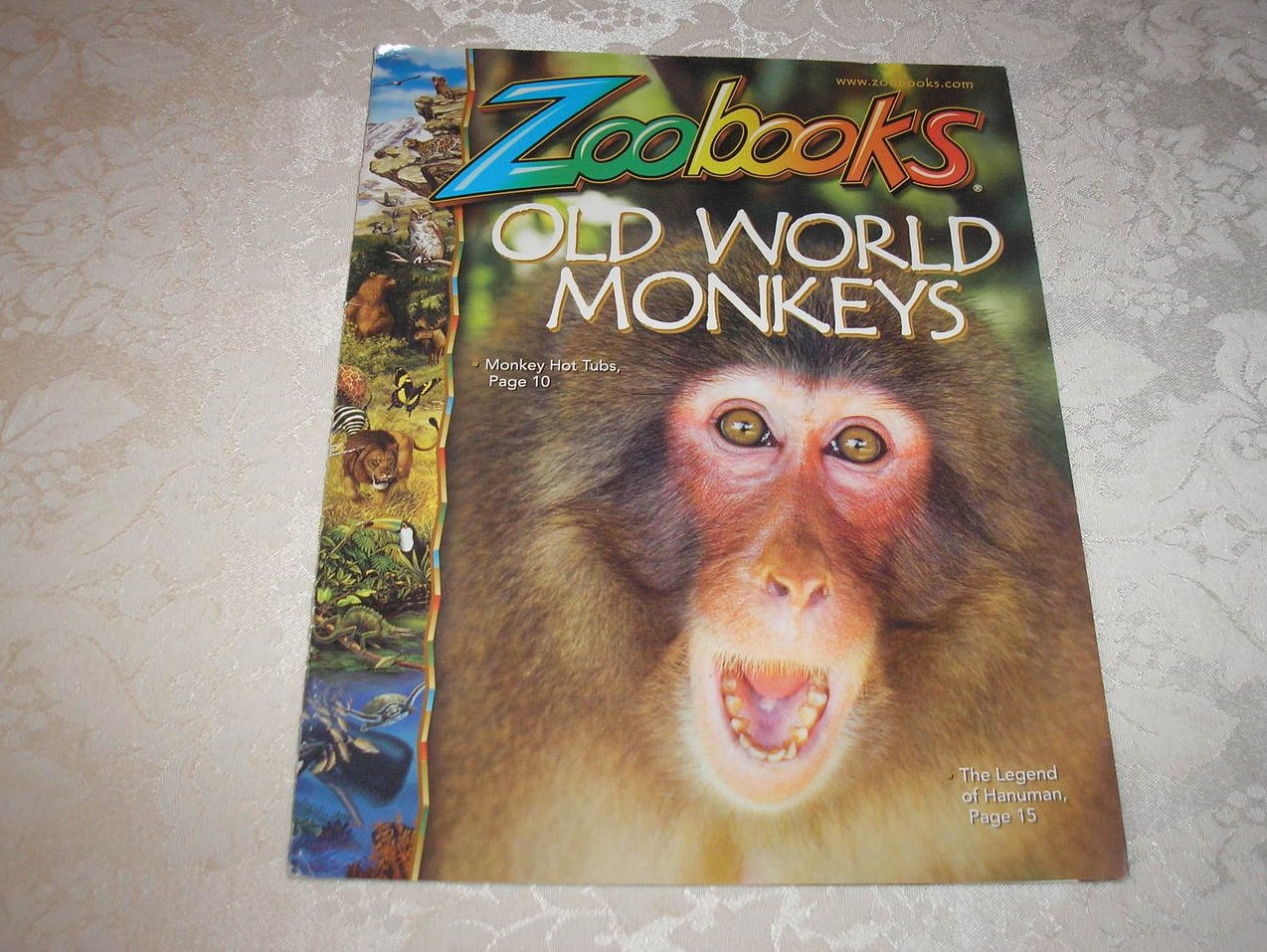 Zoobooks Magazine April 2010 Old World Monkeys good sc