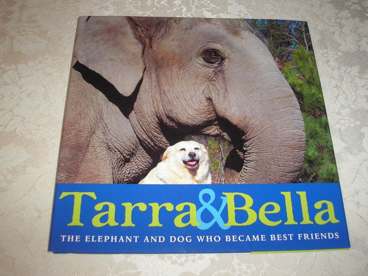 Tarra & Bella The Elephant And Dog Who Became Best Friends brand new hc with dj