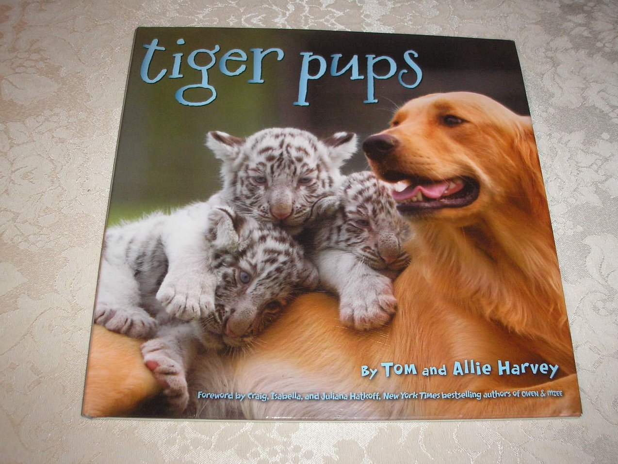 Tiger Pups Tom and Allie Harvey like new nonfiction hc with dj