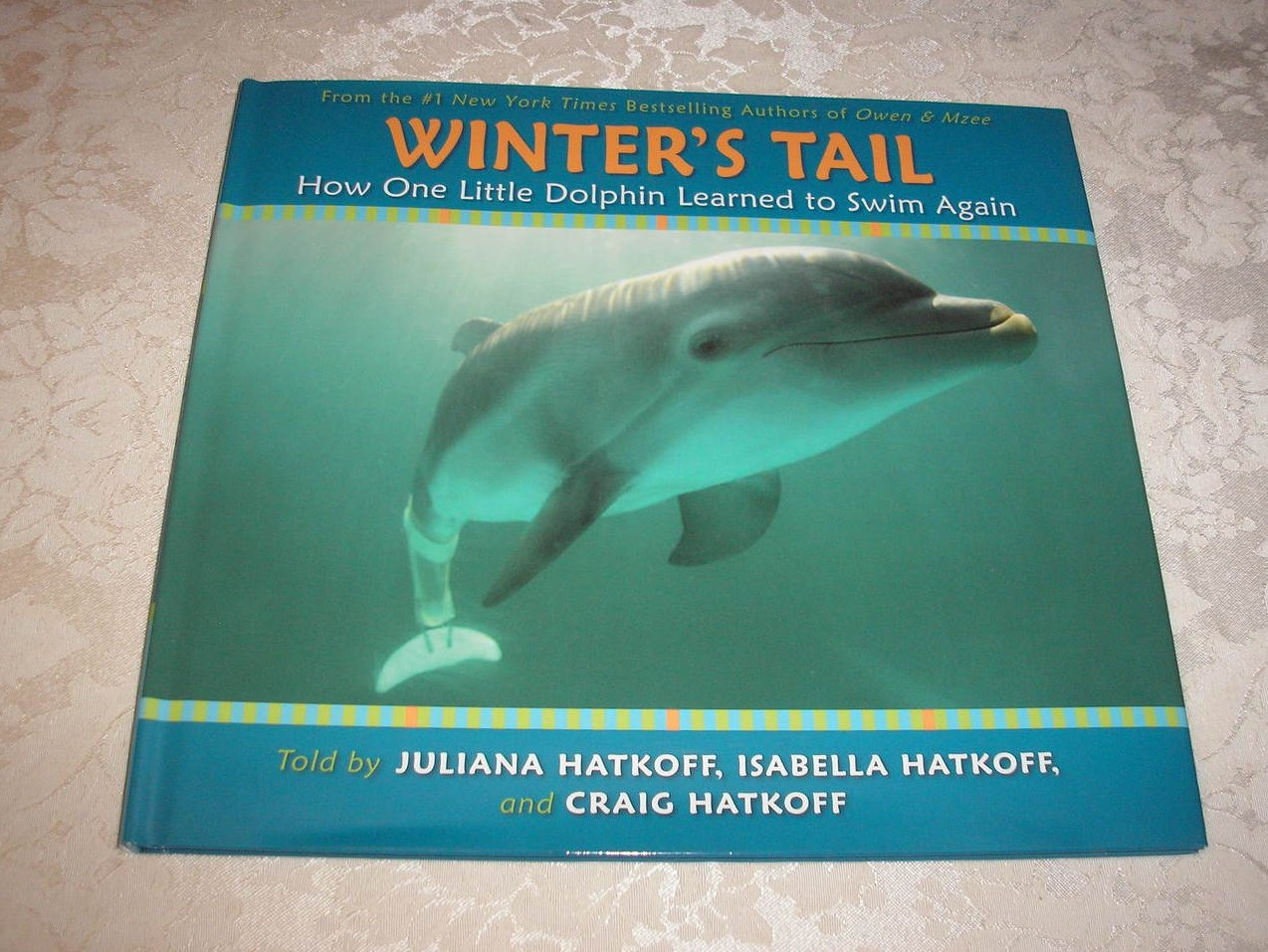 Winter's Tail How One Little Dophin Learned to Swim Again brand new hc with dj
