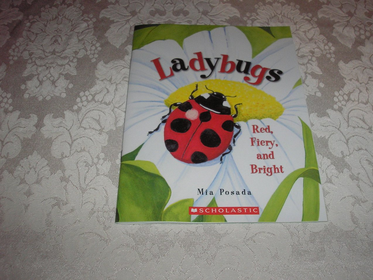 Ladybugs Red, Fiery, and Bright Mia Posada brand new sc