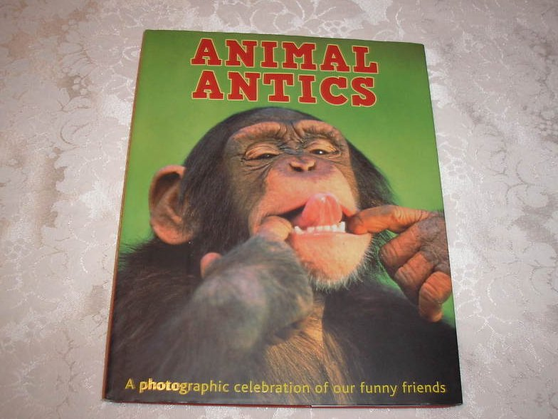 Animal Antics Daniel Gilpin brand new hardcover