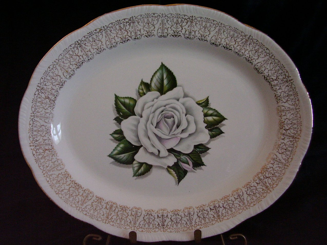 Laughlin Windsor White Rose