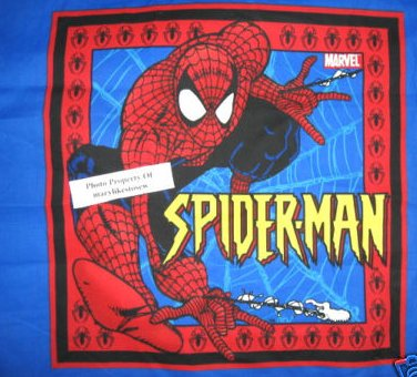 Spiderman and his web comic original Fabric Pillow Panel set of two the same