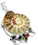Ammonite Fossil Ancient Mollusk Pendant Silver Gemstones
