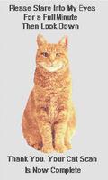 Cat Scan   Humorous Cross Stitch Pattern