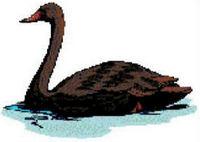 Black Swan Cross Stitch Pattern Chart