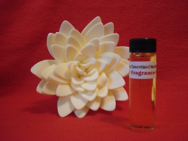 MACADEMIAN NUT ESSENTIAL FRAGRANCE OIL FOR AROMATHERAPY 1 2 OZ  15 ML  VIAL