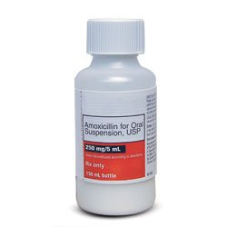 Prescription Drugs-A - Amoxicillin Oral - Amoxicillin 125 ...