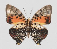 Butterfly 6 Counted Cross Stitch Pattern