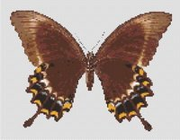 Butterfly 7 Counted Cross Stitch Pattern