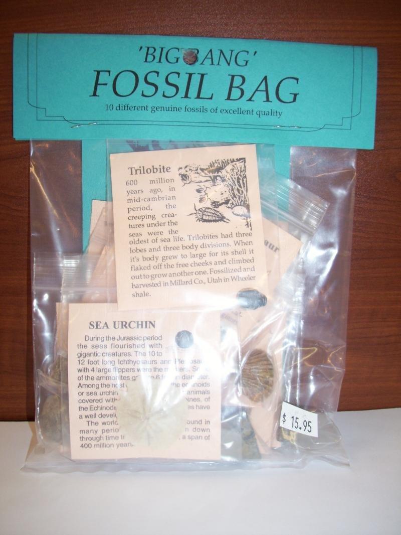 Image 2 of Big Bang Fossil Bag