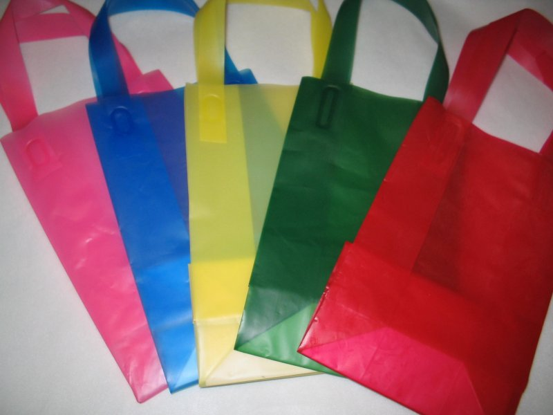 Set of 5 Multicolor Frosted Plastic Gift Bags
