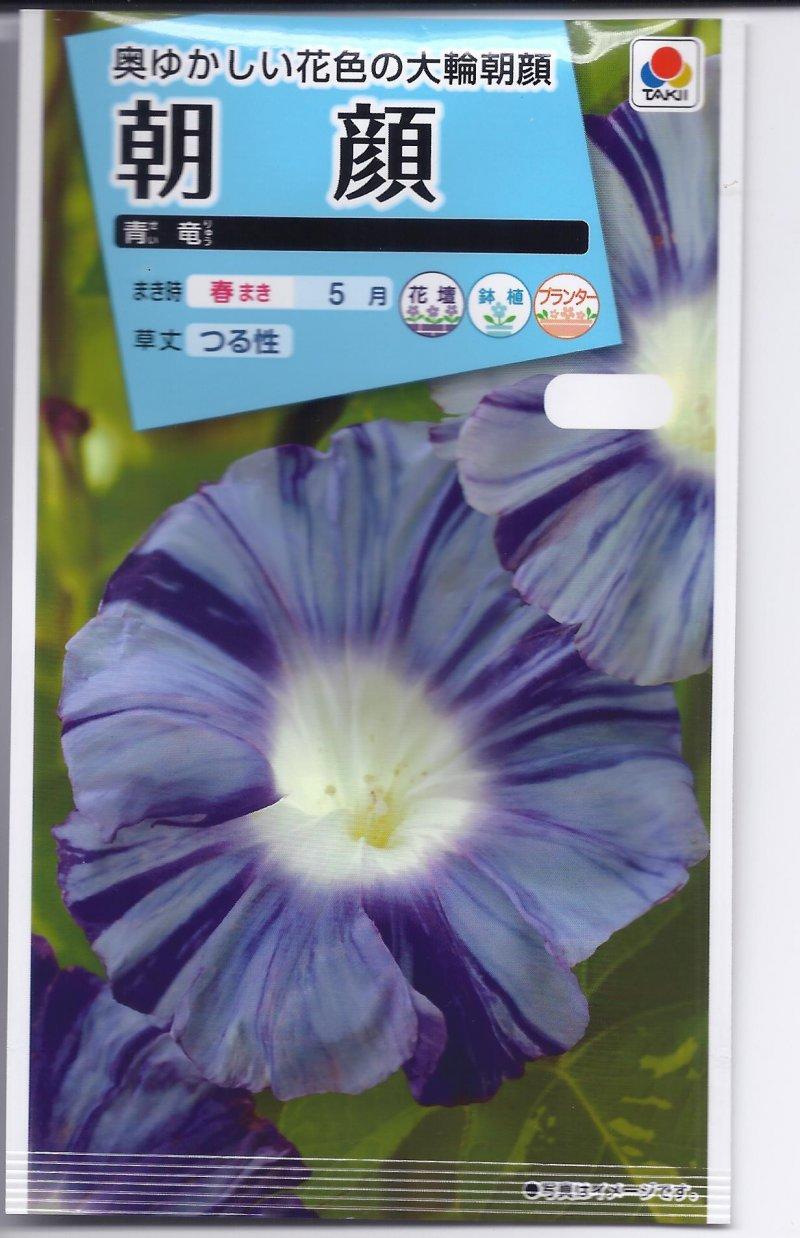 Image 0 of Japanese Morning Glory Seeds:  ''Seiryu'', Blue Dragon, Seeds Ipomoea Nil