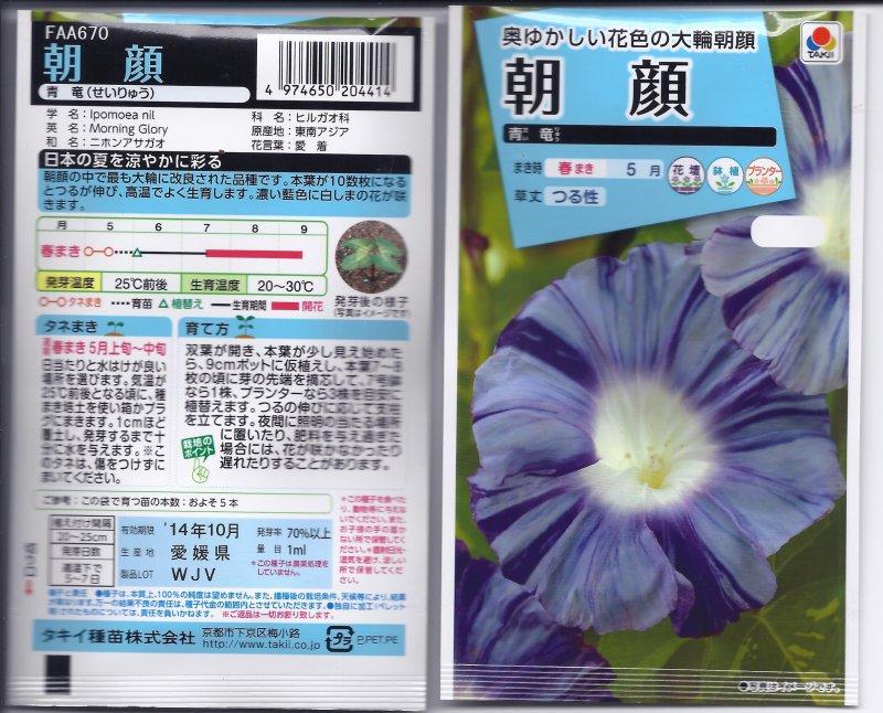 Image 1 of Japanese Morning Glory Seeds:  ''Seiryu'', Blue Dragon, Seeds Ipomoea Nil