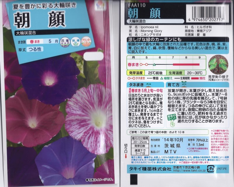 Image 0 of Japanese Morning Glory Seeds: Giant Flowered Mix, Ipomoea Nil