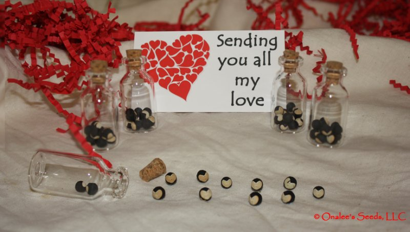 Image 0 of Heartseed / Love In a Puff seeds Valentine's Day Gift - Sending You All My Love