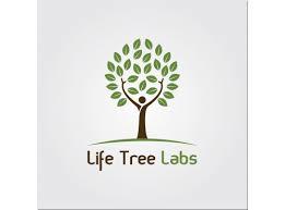 All-Purpose Home Soap Bio 1x32 Fluid oz Each by LIFE TREE