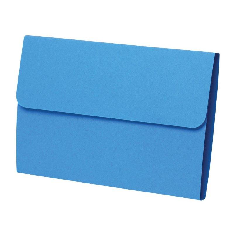 Economy Double-Fold Prescription File Folders 100ct (Blue Color)