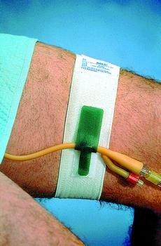 Catheter Holder Waistband 1-Sz Box of 10