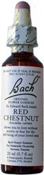 Image 0 of Bach Red Chestnut Flower Essence 20 Ml