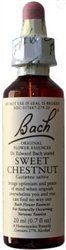 Image 0 of Bach Flower Essence Sweet Chestnut 20 Ml