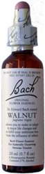 Image 0 of Bach Walnut 20 Ml