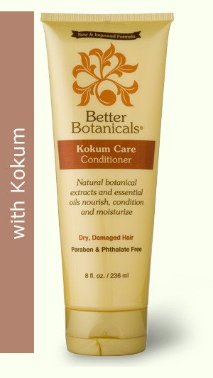 Image 0 of Conditioner Kokum Care 1x8 Fluid oz Each by BETTER BOTANICALS
