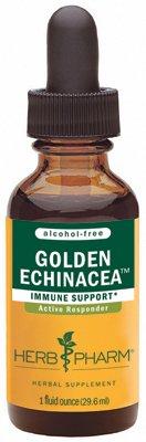 Image 0 of Gldn Echinacea(Af)Glycer 1x1 Fluid oz Each by HERB PHARM