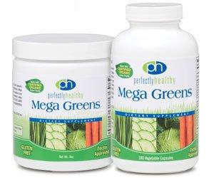 Mega Greens Plus Msm Powder 1x8 oz Each by PERFECTLY HEALTHY