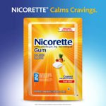 Image 0 of Nicorette Fruit Chill 2 Mg Gum 200 Pieces